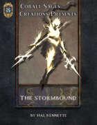 The_Stormbound_PF1E.jpg